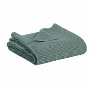Piqué de coton MAIA Vert de gris
