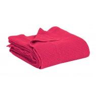 Piqué de coton MAIA Pink