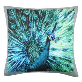Coussin Velours PAON